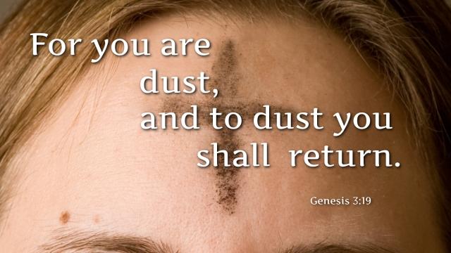 Genesis 3_19